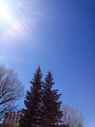 Forecast error: No clouds Calgary, Alberta Canada