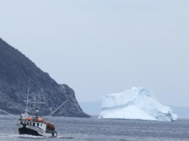 Boat and Icebergs La Scie, Newfoundland and Labrador Canada