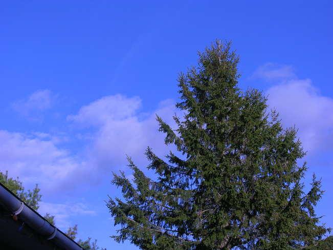 Proof we had one day of blue skies this week Salisbury, New Brunswick Canada