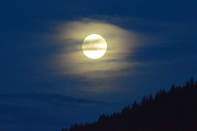 Mist Moon North Vancouver, British Columbia Canada