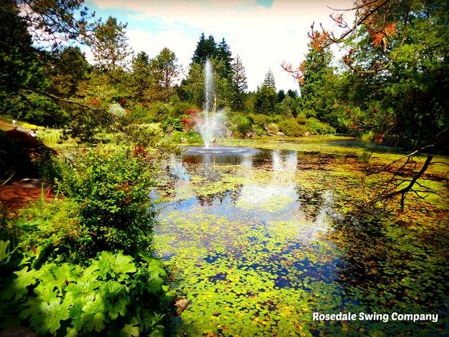 Van Dusen Lily Pond Vancouver, British Columbia Canada