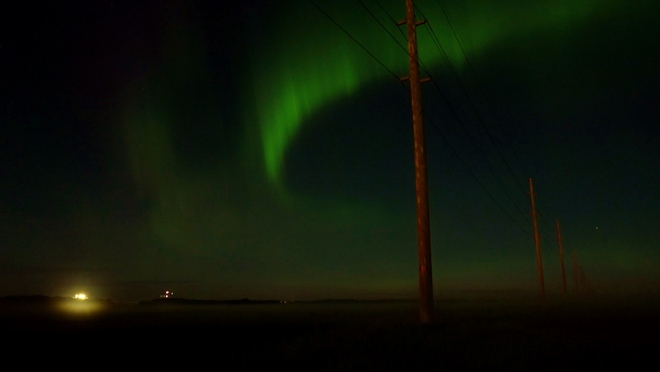 Northern Beauty Surprise Yorkton, Saskatchewan Canada