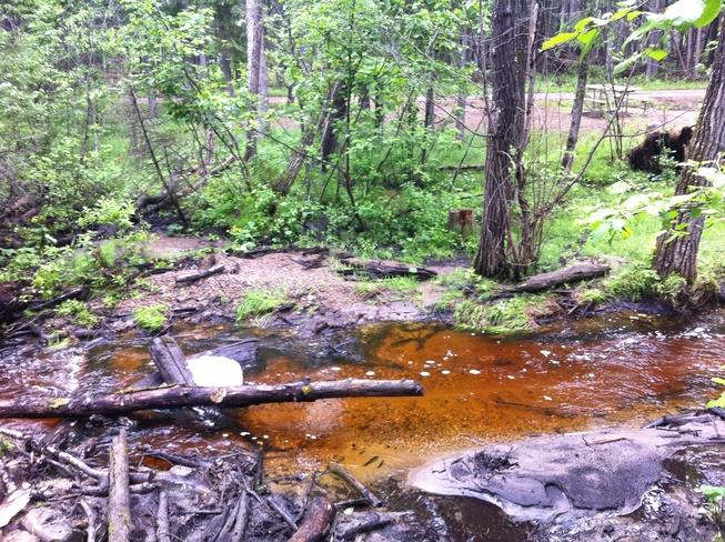 a stream, but not a stream Waskesiu Lake, Saskatchewan Canada