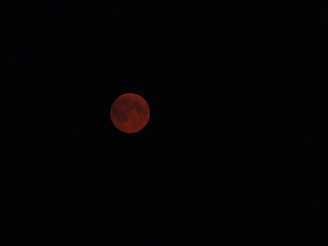 Red moon Lewisporte, Newfoundland and Labrador Canada