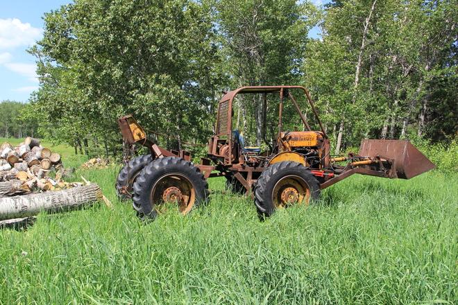 tree farmer Devlin, Ontario Canada