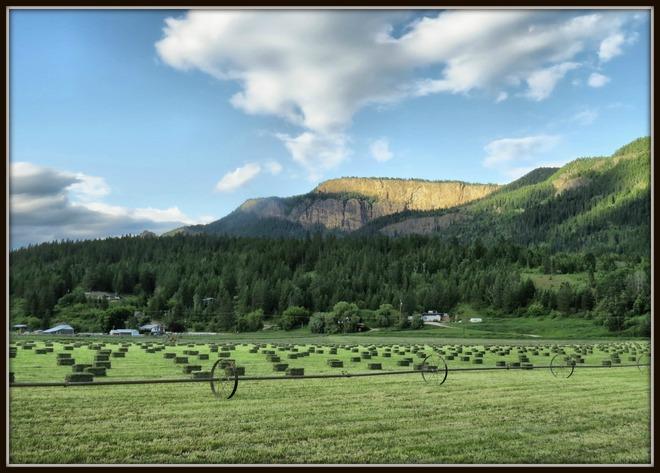 Making Hay in the North Okanagan Enderby, British Columbia Canada