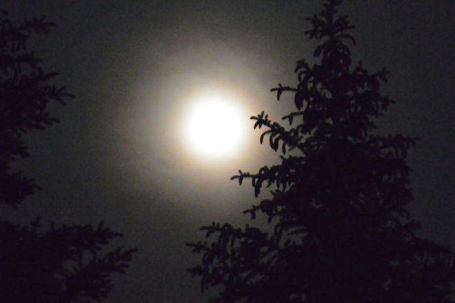 The super moon Mississauga, Ontario Canada