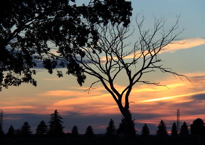 Sunset, Dodge Line, Woodstock Woodstock, Ontario Canada