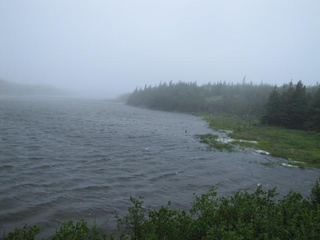 Rain drizzle and fog Long Harbour-Mount Arlington Heights, Newfoundland and Labrador Canada