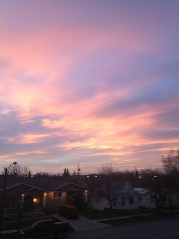 pretty and pink Kindersley, Saskatchewan Canada
