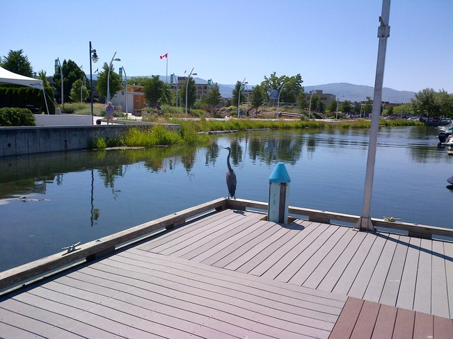 Kelowna Yacht Club Kelowna, British Columbia Canada