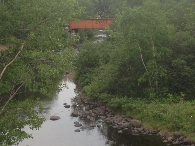 trussel Botwood, Newfoundland and Labrador Canada