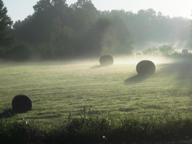 Morning Fog Aylesford, Nova Scotia Canada