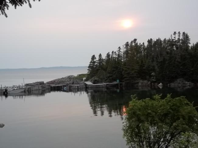 Beautiful Evening Birchy Bay, Newfoundland and Labrador Canada