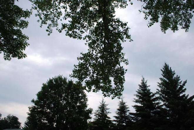 A Few Clouds Brandon, Manitoba Canada