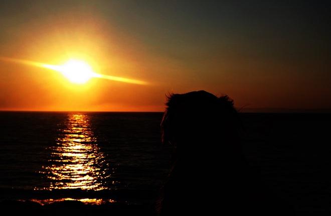 Watching A halls Harbour sunset Canning, Nova Scotia Canada