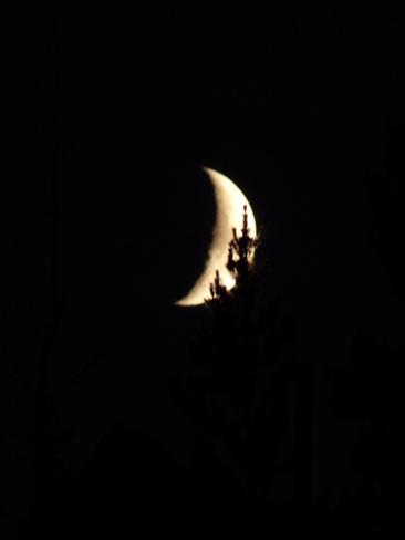 moonset Kamloops, British Columbia Canada