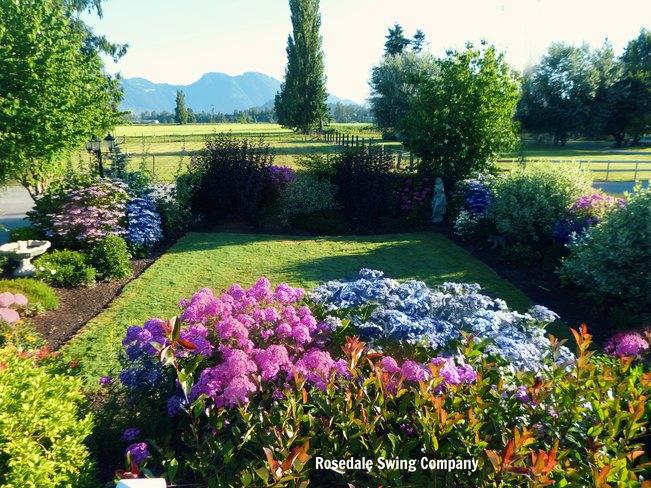50 Shades of Summer. Vancouver, British Columbia Canada