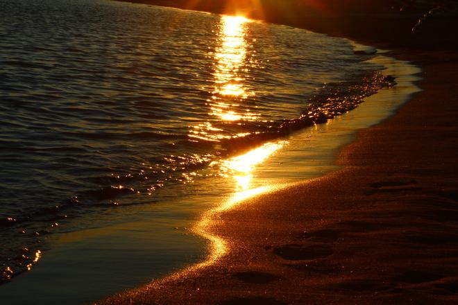 golden reflections Richmond, British Columbia Canada