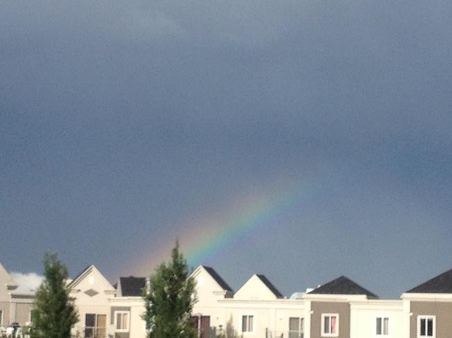 Rainbow Calgary, Alberta Canada