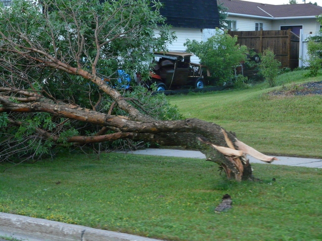 Midnight Storm (2) Dryden, Ontario Canada