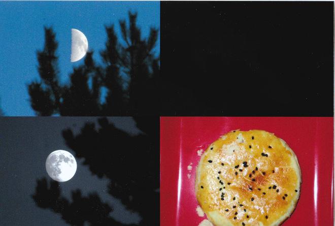 Moon Phase. Burnaby, British Columbia Canada