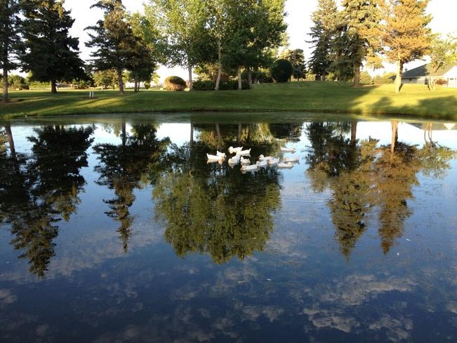 Reflection of beauty Prince Albert, Saskatchewan Canada