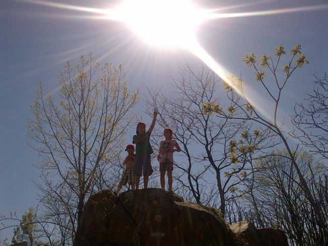 welcoming Spring Toronto, Ontario Canada