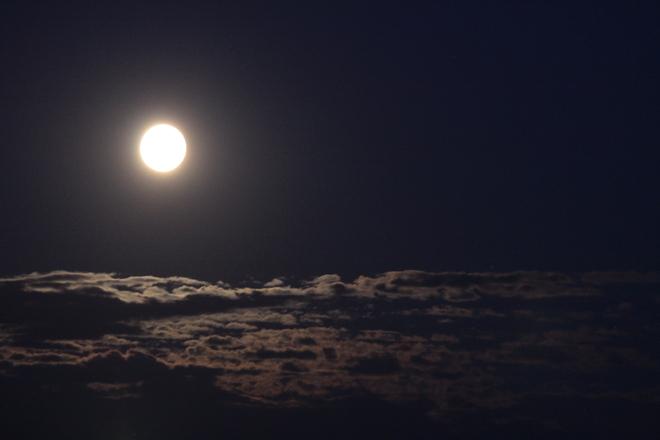 Mr. Moon Red Deer, Alberta Canada