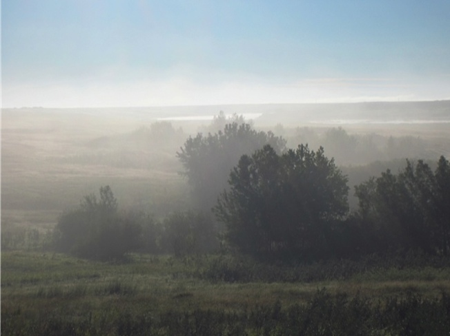 morning fog Kerrobert, Saskatchewan Canada