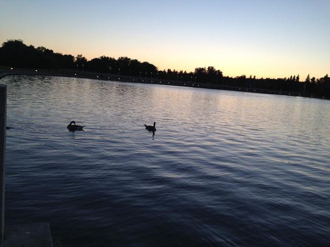 at the lake Regina, Saskatchewan Canada