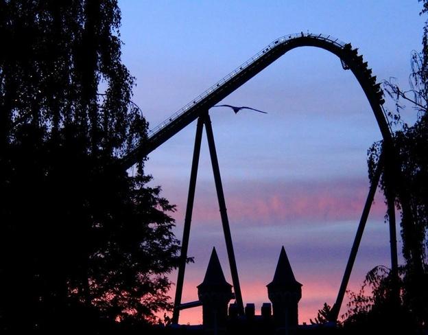 Gorgeous Night @ Wonderland Maple, Ontario Canada