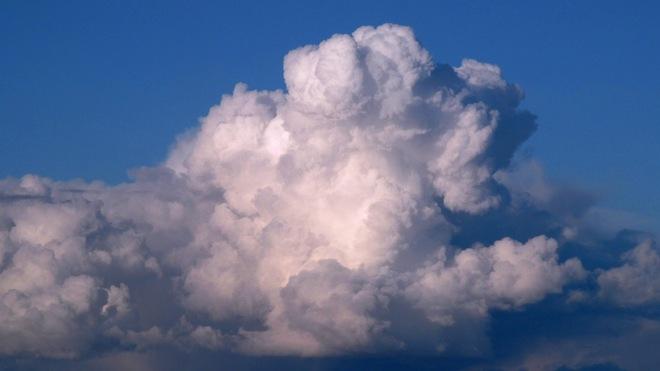 Barking Cloud! Campbell River, British Columbia Canada