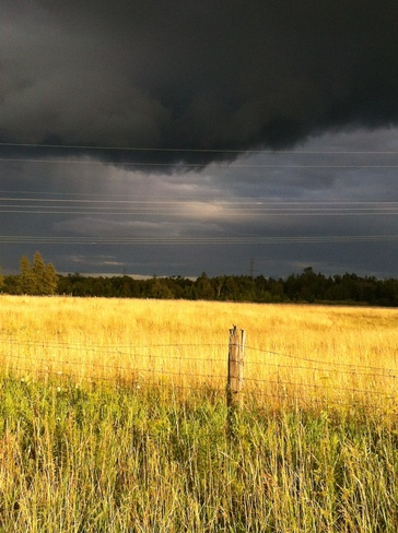 Summer Rain Beaverton, Ontario Canada