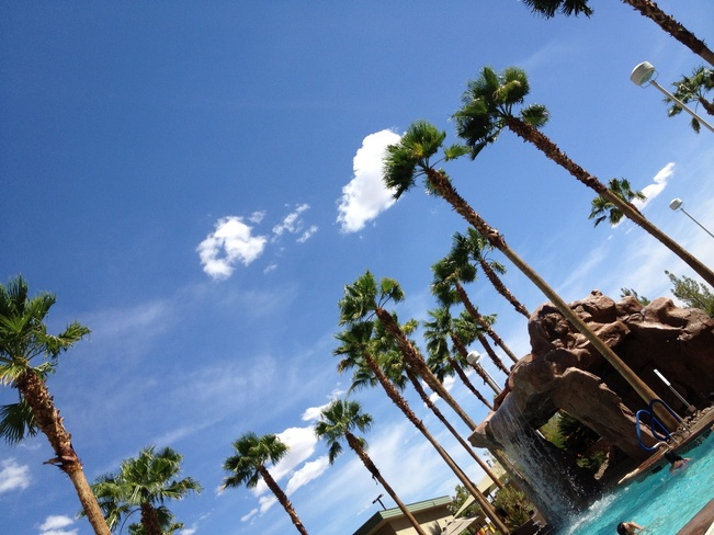 nice and sunny Las Vegas, Nevada United States