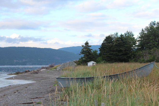 Alone and waiting Corner Brook, Newfoundland and Labrador Canada