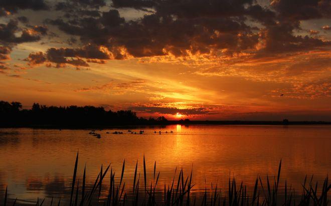 sunrise Brooks, Alberta Canada