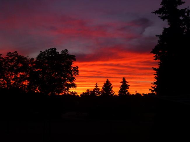 Amazing Sunset Waterloo, Ontario Canada