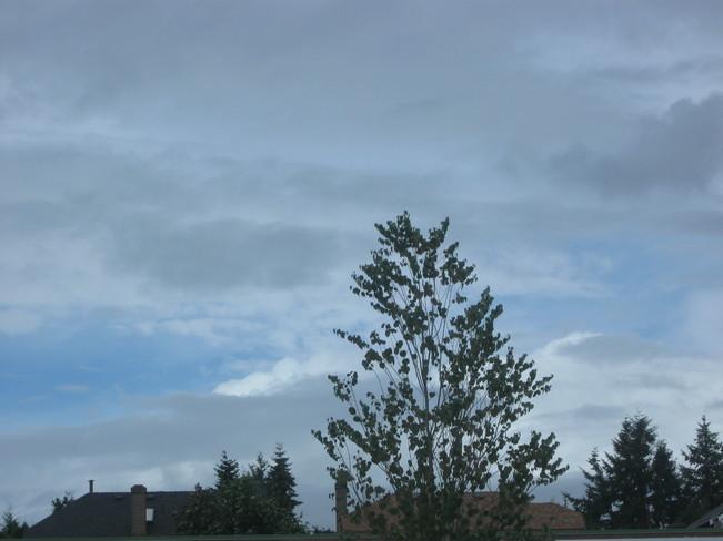 a nice day Surrey, British Columbia Canada