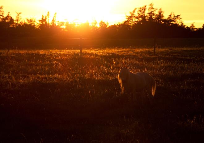sundown in the country Yarmouth, Nova Scotia Canada
