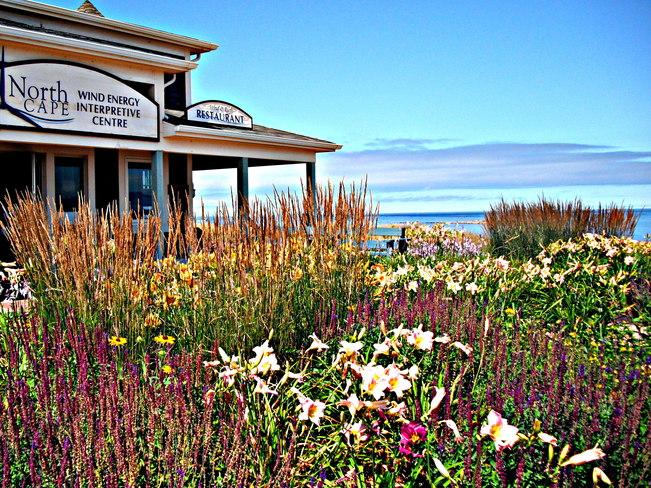 Beautiful North Cape Tignish, Prince Edward Island Canada