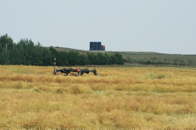 Harvest and oil wells Reward, Saskatchewan Canada