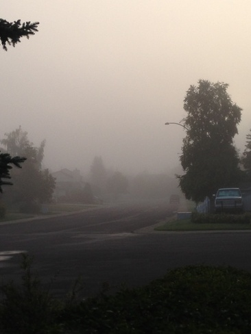 Early morning Fog Edmonton, Alberta Canada