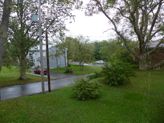 Rain Shelburne, Nova Scotia Canada