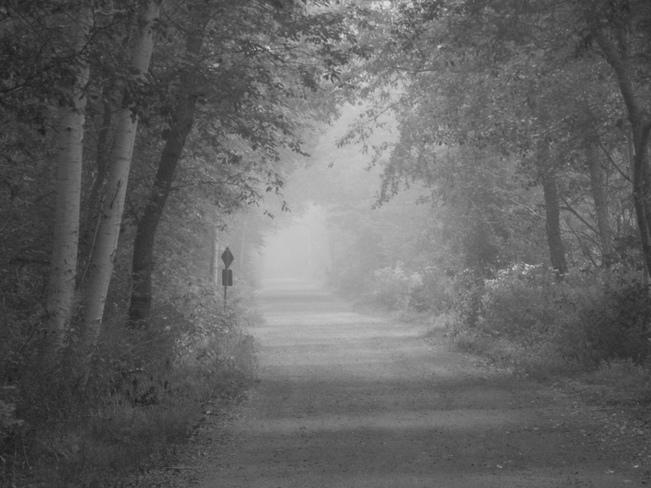 Beyond the Fog Kingston, Nova Scotia Canada