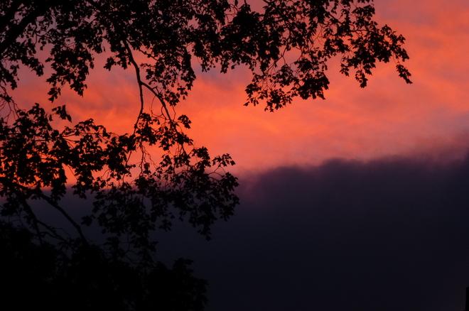 Purple night overtakes sunset Toronto, Ontario Canada