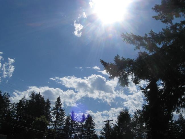 the sun and more Surrey, British Columbia Canada