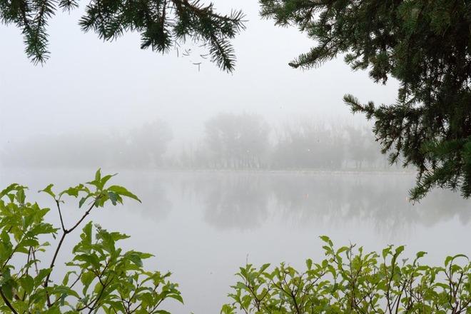 Foggy Morning at Henderson Lake Lethbridge, Alberta Canada