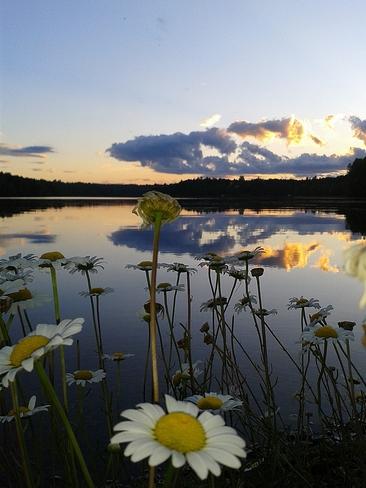SUNSET Fredericton, New Brunswick Canada