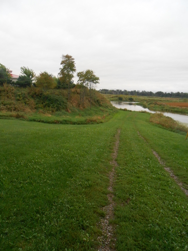 Green in september Canning, Nova Scotia Canada